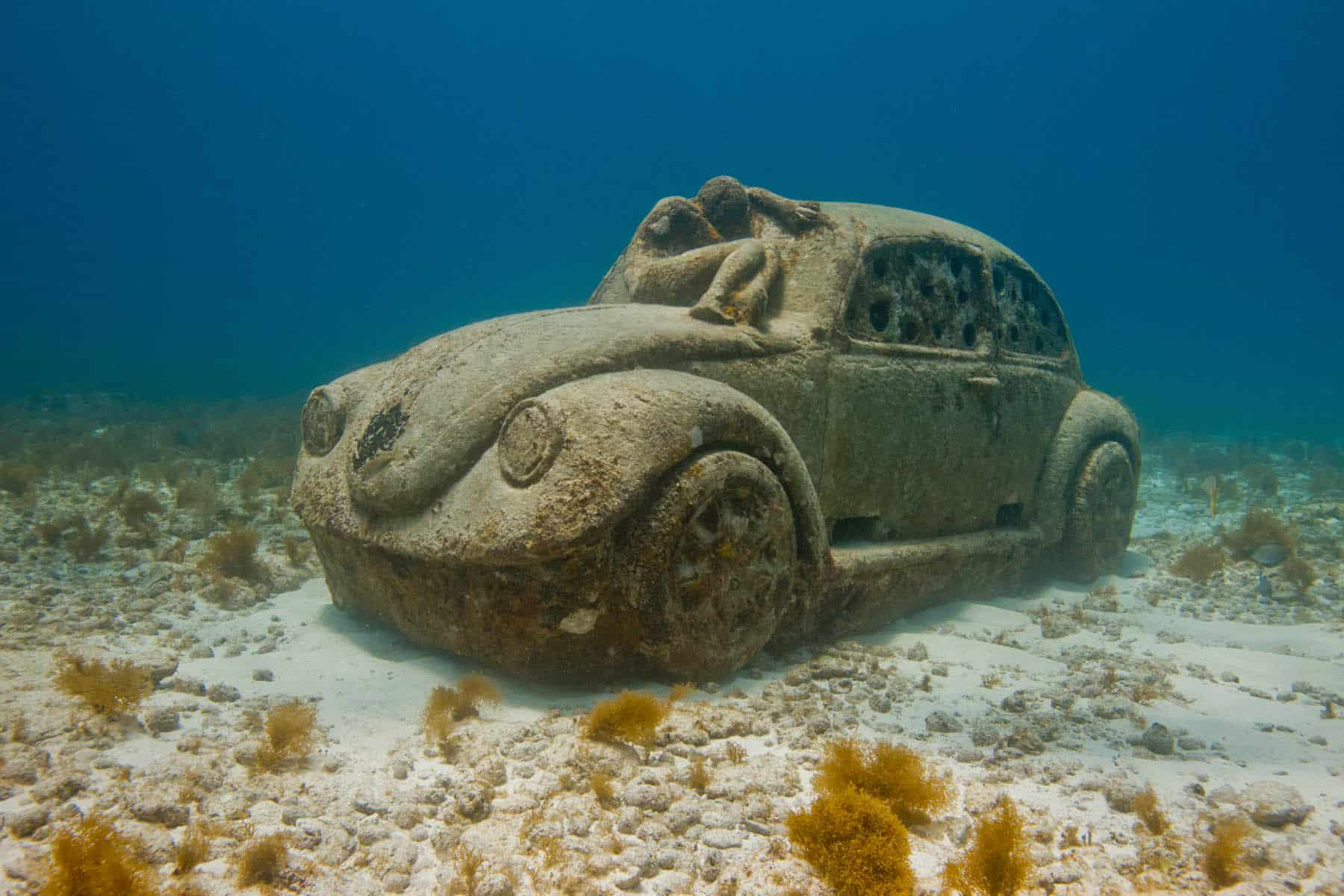 Anthropocene de Jason DeCaires Taylor