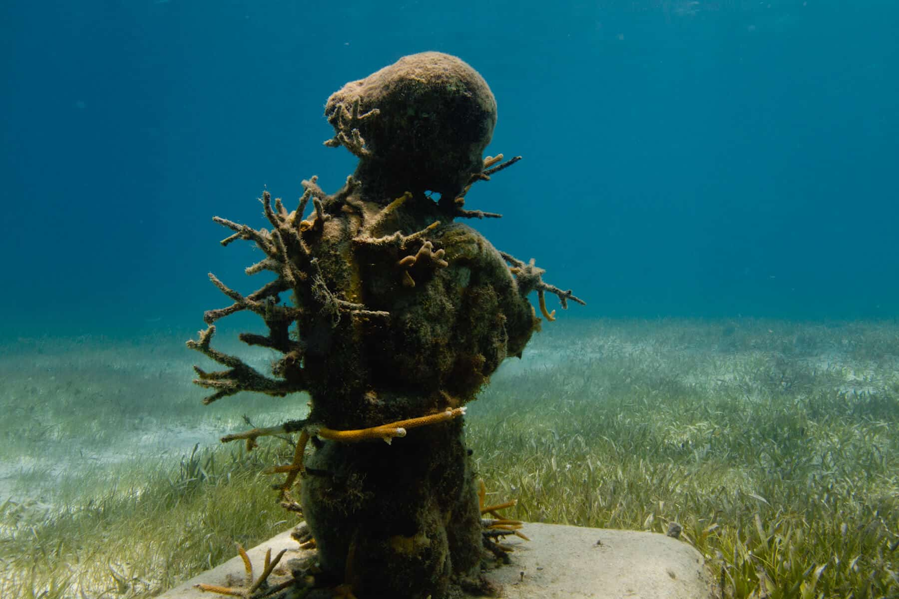 'Ocean Muse' de Roberto Diaz Abraham
