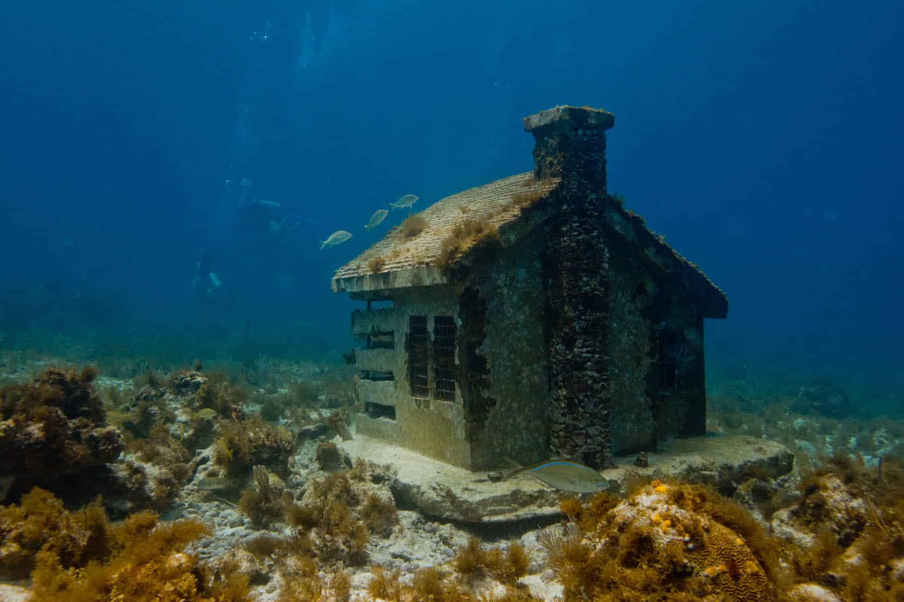 'Urban Reef House' de Jason deCaires Taylor