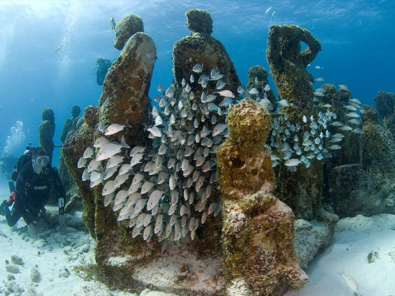 dive-cancun-underwater-museum-musa-1L6Y