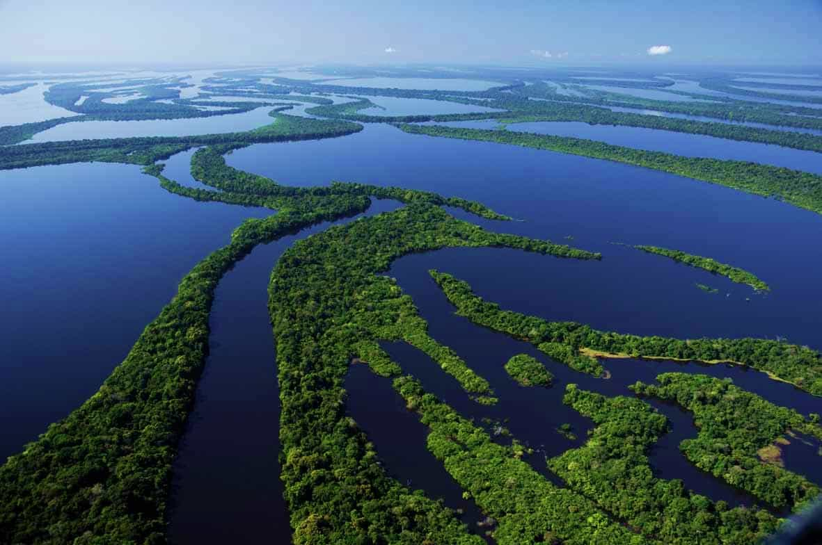 Vista aérea da Estação Ecológica de Anavilhanas, no rio Negro -  Amazonas, Brasil