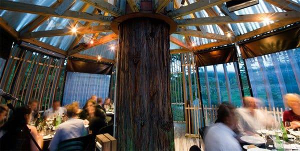 "Dentro do ""The Redwoods Treehouse"""