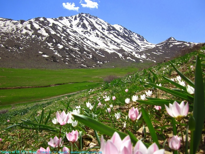Zagros Mountains, Kermanshah