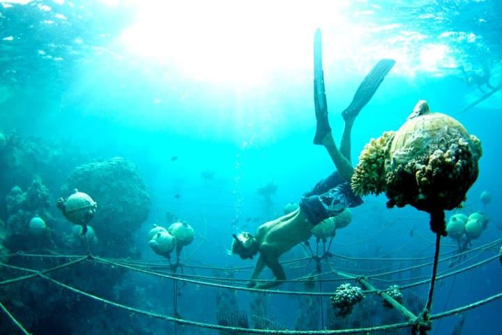 ilha-das-perolas-negras_002