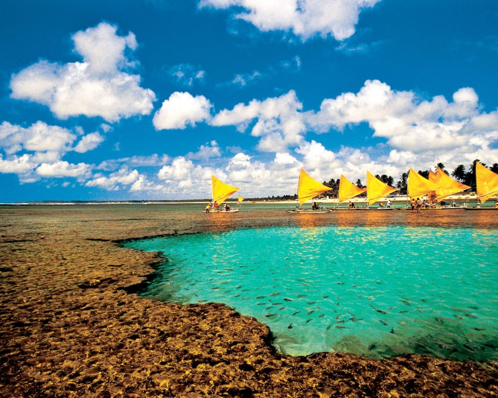 Piscinas naturais na praia de Porto de Galinhas. Foto via