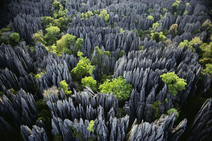 Tsingy Stone Forest. Foto via