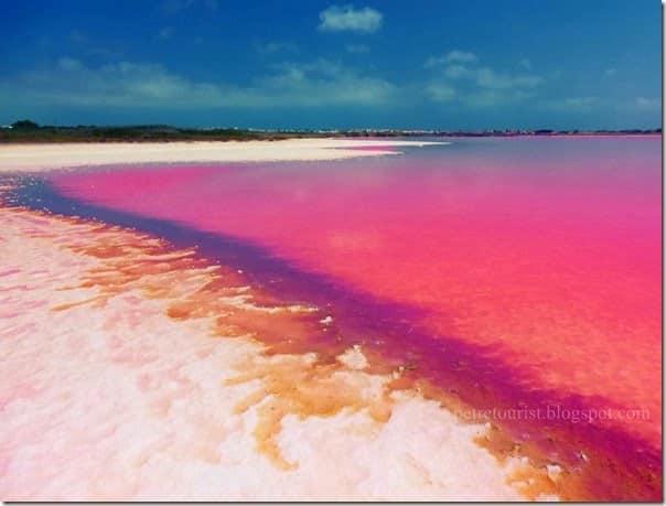 pink-lagoon_thumb[2]