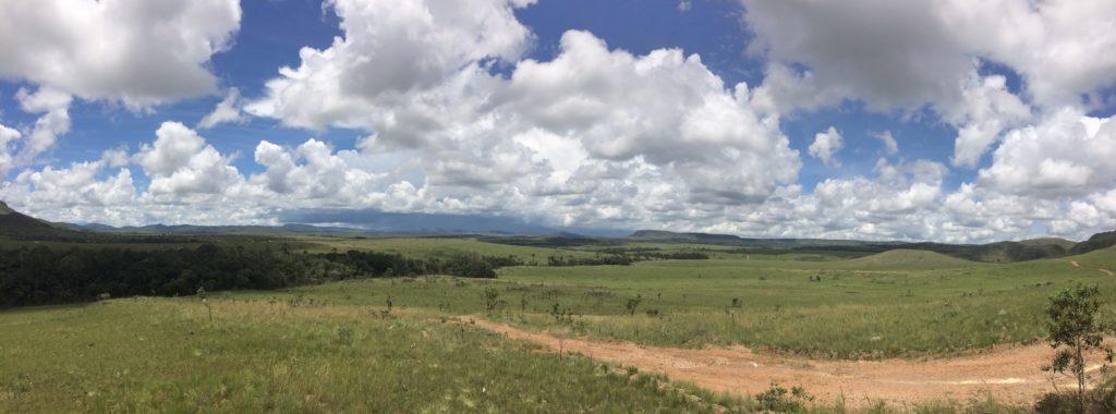 Visão do Cerrado
