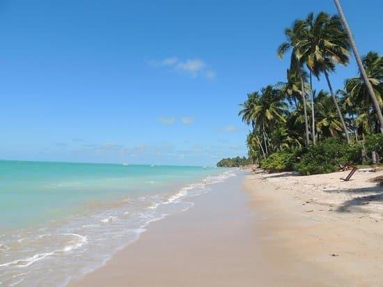 Praia de ponta de mangue em Maragogi