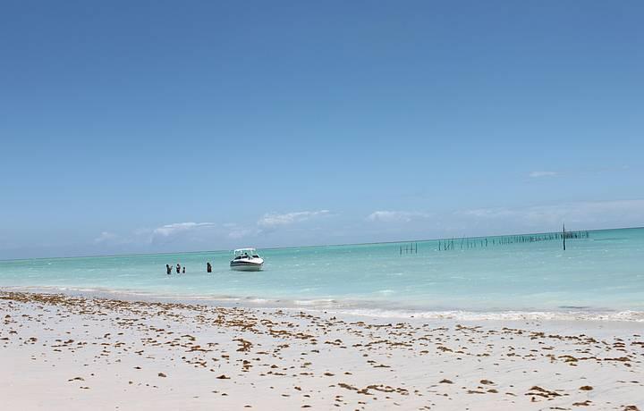 Praia do Xereu em Maragogi
