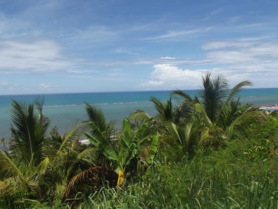 Praia de Itapororoca | Fonte: TripAdvisor