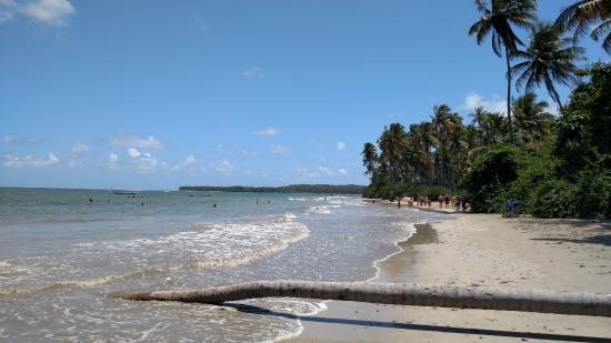 Praia da Cueira | TripAdvisor