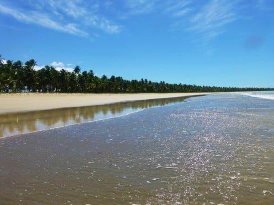 Praia do Morro | Fonte: TripAdvisor
