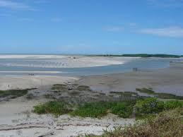 Praia do Maçarico | Fonte: TripAdvisor