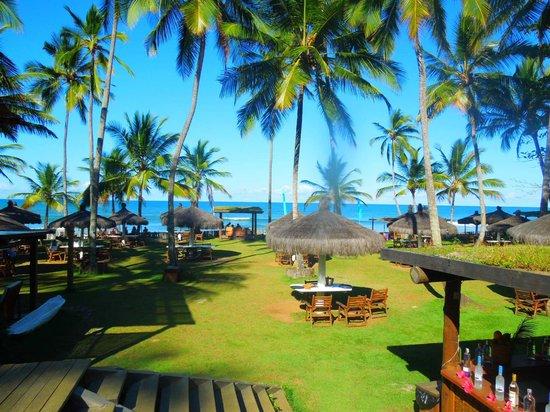 Praia do Itacarezinho | Fonte: TripAdvisor