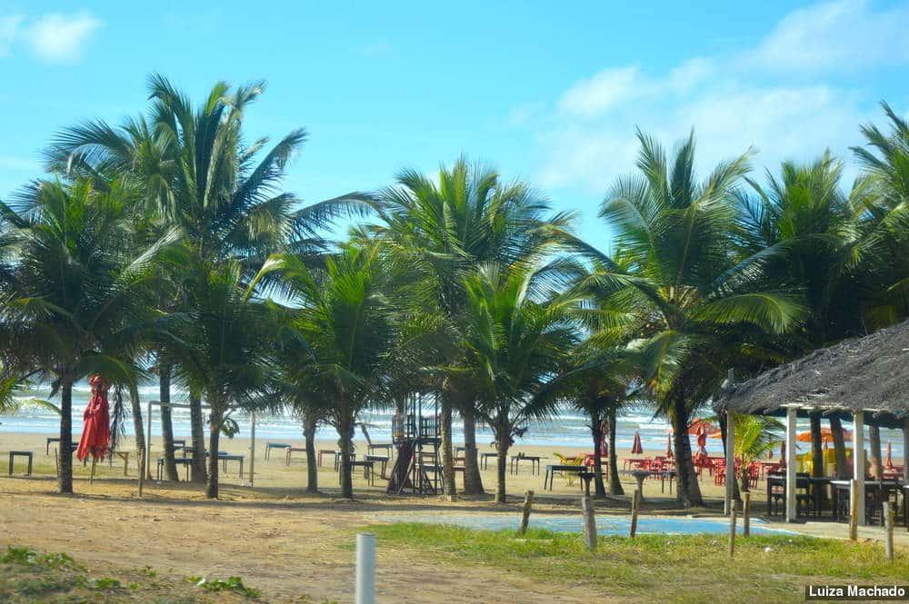 Praia dos Náufragos Por Luiza Machado