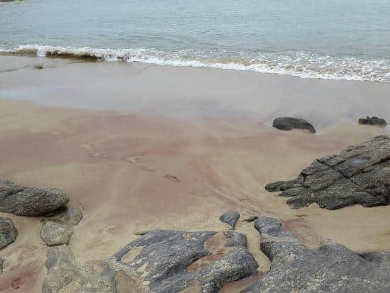 Praia Vermelha  Reprodução TripAdvisor